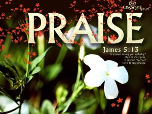 James513Priase